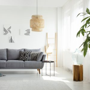 Real photo of a rattan lamp above a gray sofa in boho living room interior with white walls and a tree